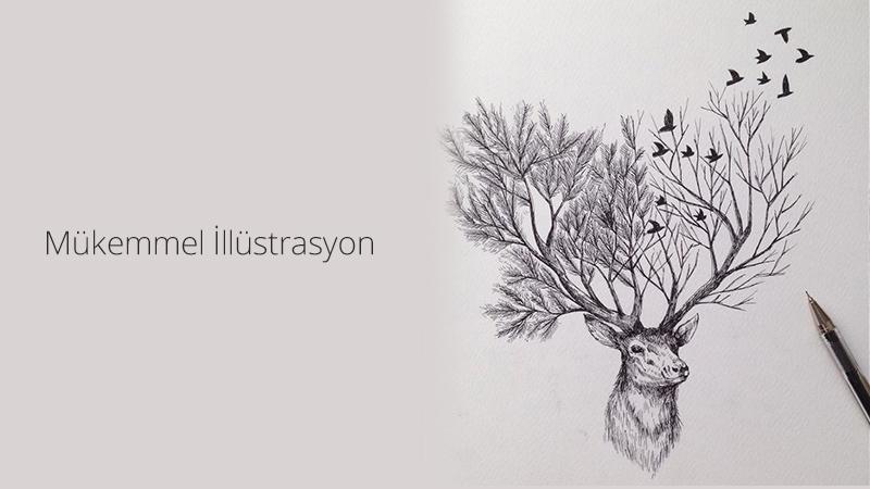 mukemmel-illustrasyon